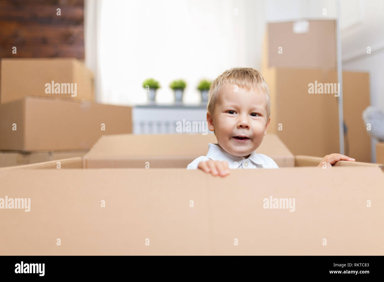 Cute toddler helping out packing boxes and moving - Stock Image