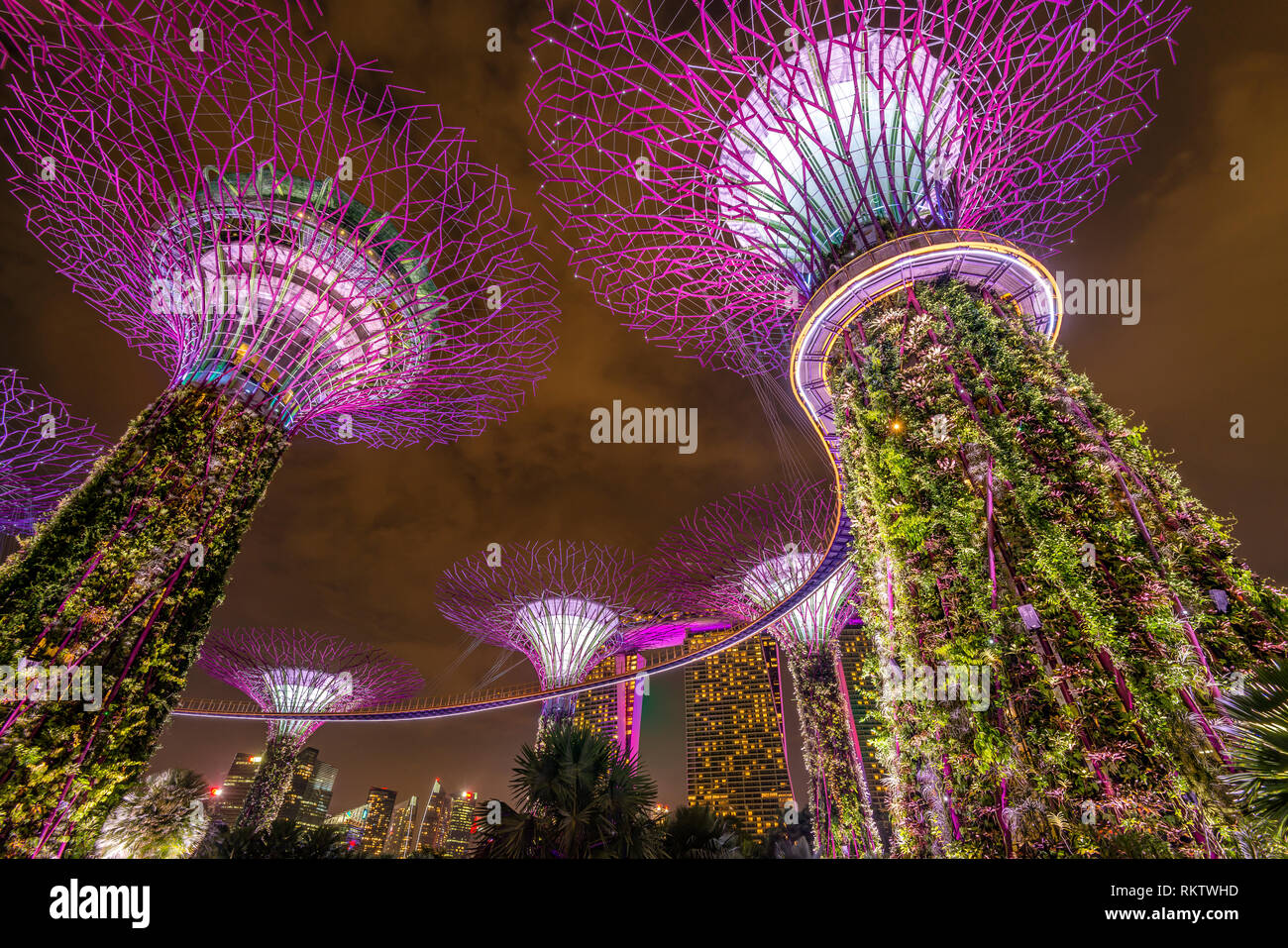 Beleuchtete Supertrees bei Nacht, Gardens by the Bay, Singapur | Illuminated Supertrees at Night, Gardens by the Bay, Singapore - Stock Image