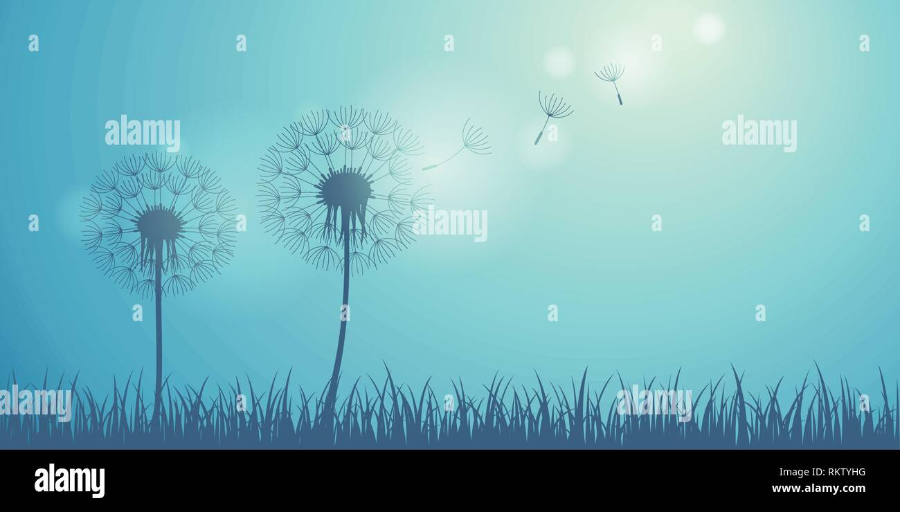 dandelion silhouette on blue background with flying seeds vector illustration EPS10 - Stock Vector