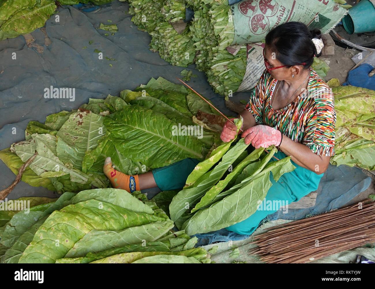 Thailand Companies Stock Photos & Thailand Companies Stock Images