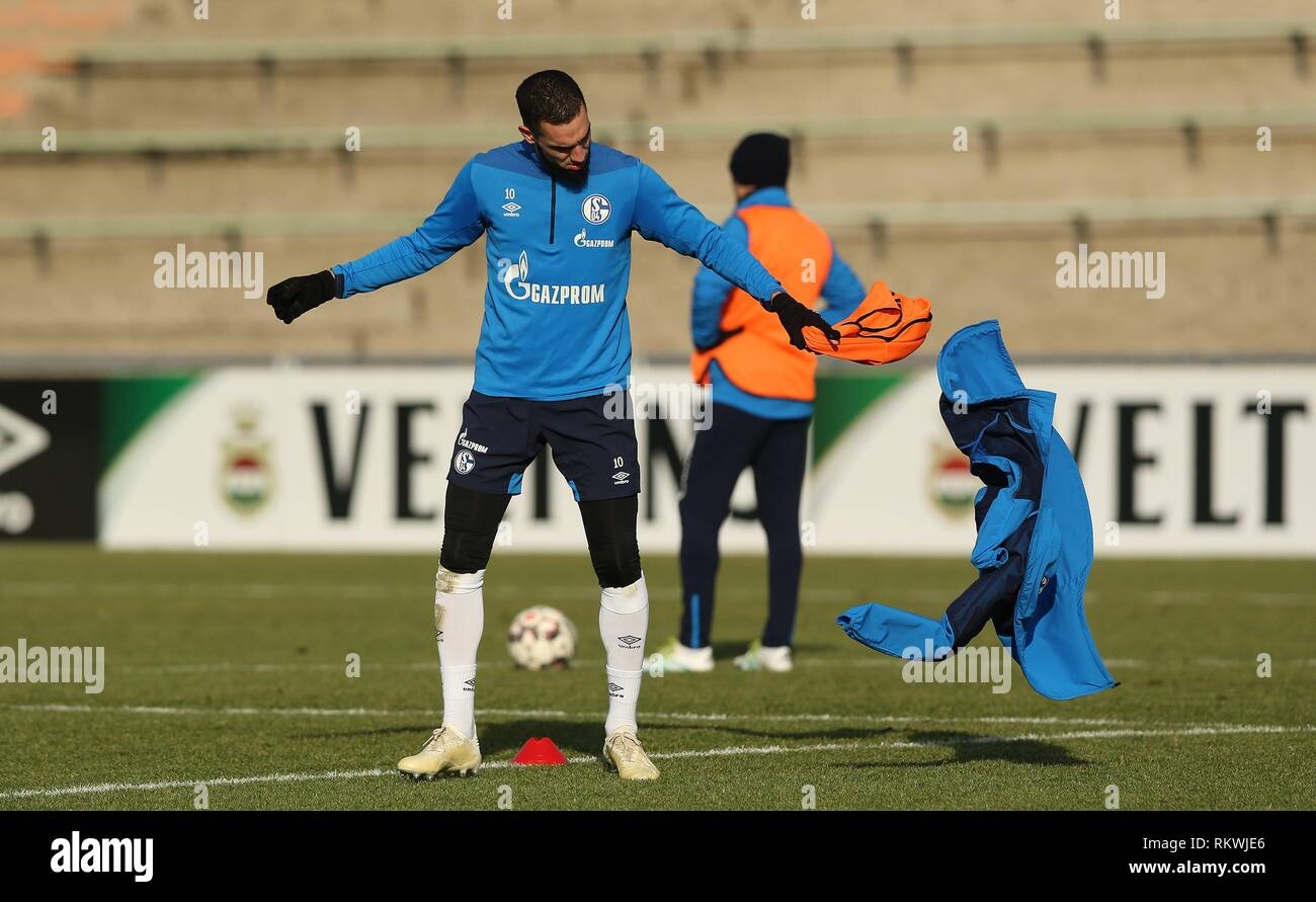 firo: 12.02.2019, football, 1.Bundesliga, season 2018/2019, FC Schalke 04, training, BENTALEB | usage worldwide - Stock Image