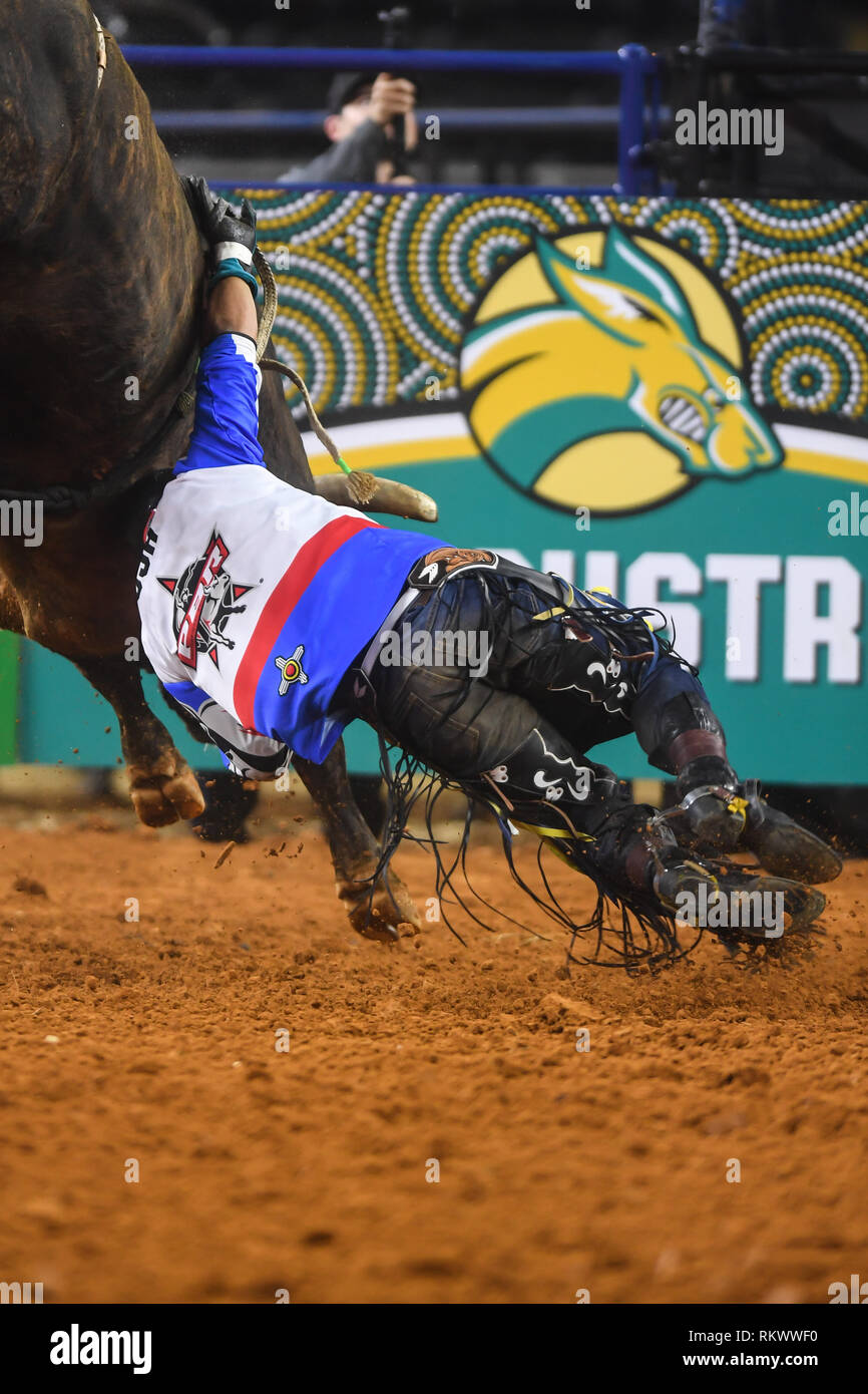 Arlington, Texas, USA. 10th Feb, 2019. KEYSHAWN WHITEHORSE gets caught on Magic Train during the final round of the competition at AT&T Stadium in Arlington, Texas. Credit: Amy Sanderson/ZUMA Wire/Alamy Live News - Stock Image
