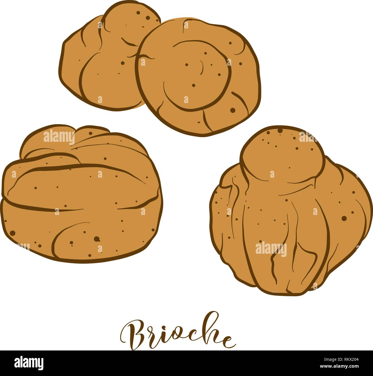 Colored sketches of Brioche bread. Vector drawing of Yeast bread, Sweet food, usually known in France. Colored Bread illustration series. - Stock Vector