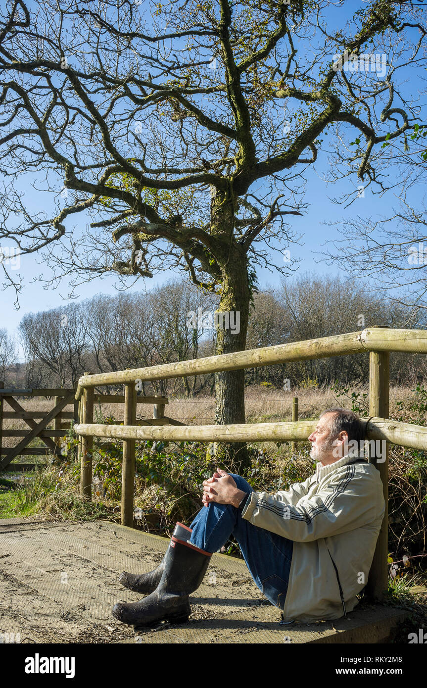 A walker relaxing in the winter sunshine at Andrew's Wood, South Hams, Devon, UK Stock Photo