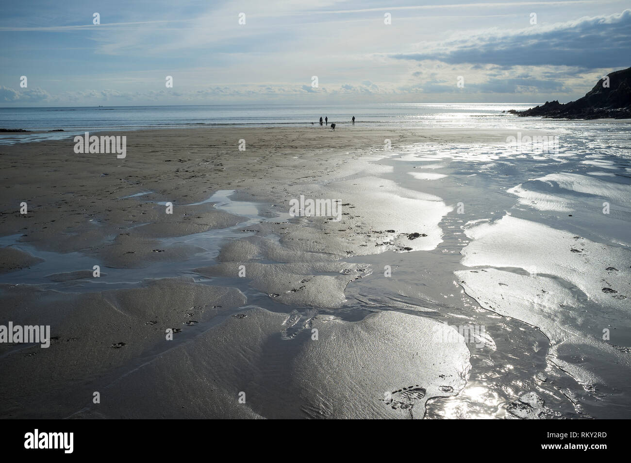 Silver sands at low tide on the River Erme Estuary at Wonwell Beach, Devon, UK. - Stock Image