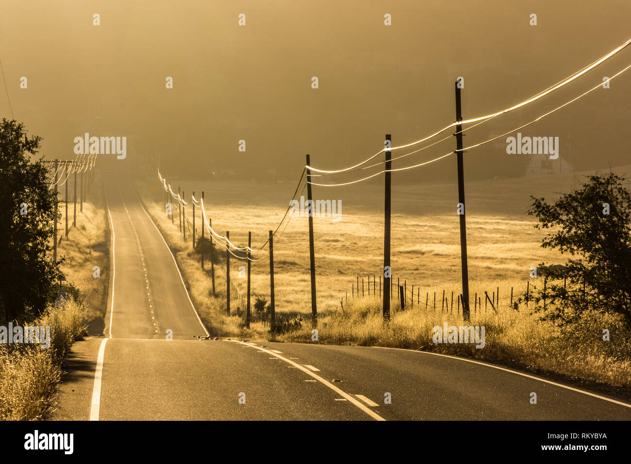Rural hillside country road in hazy morning light lined with powerlines. - Stock Image