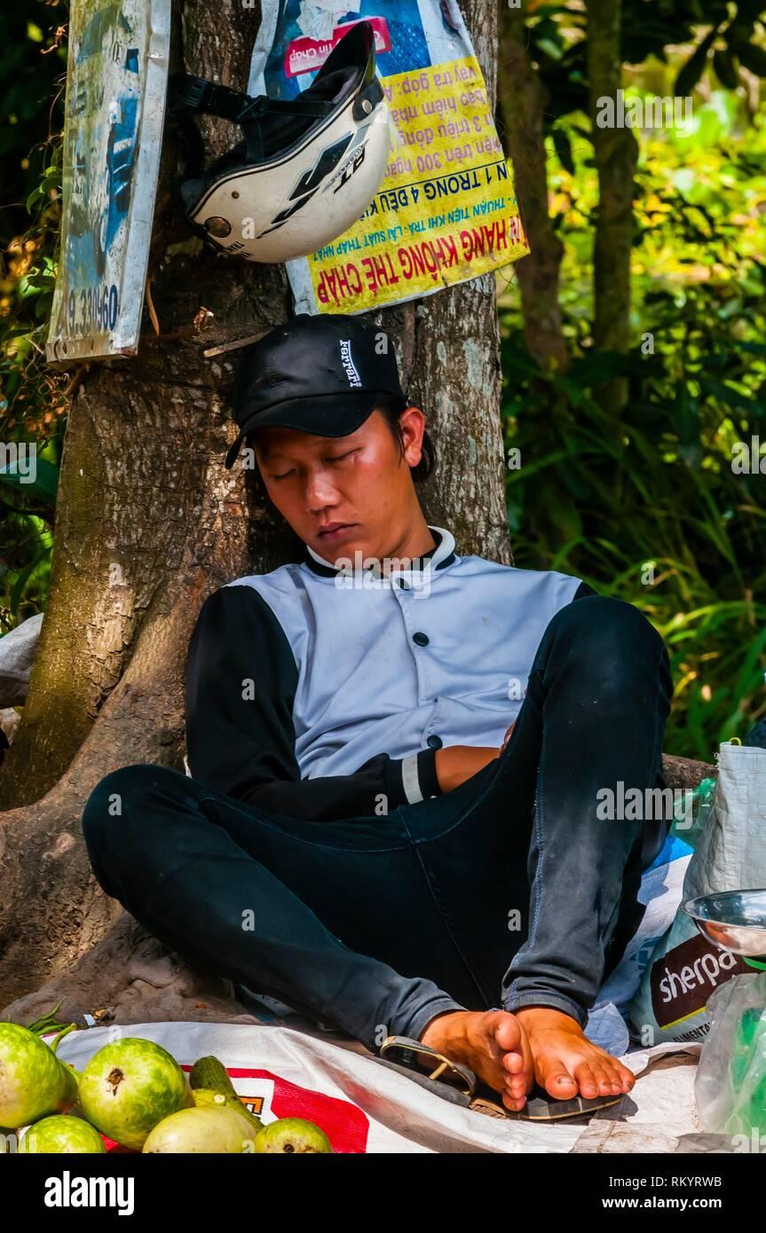 A street vendor selling produce takes a nap, near Cai Lay, Vietnam. - Stock Image