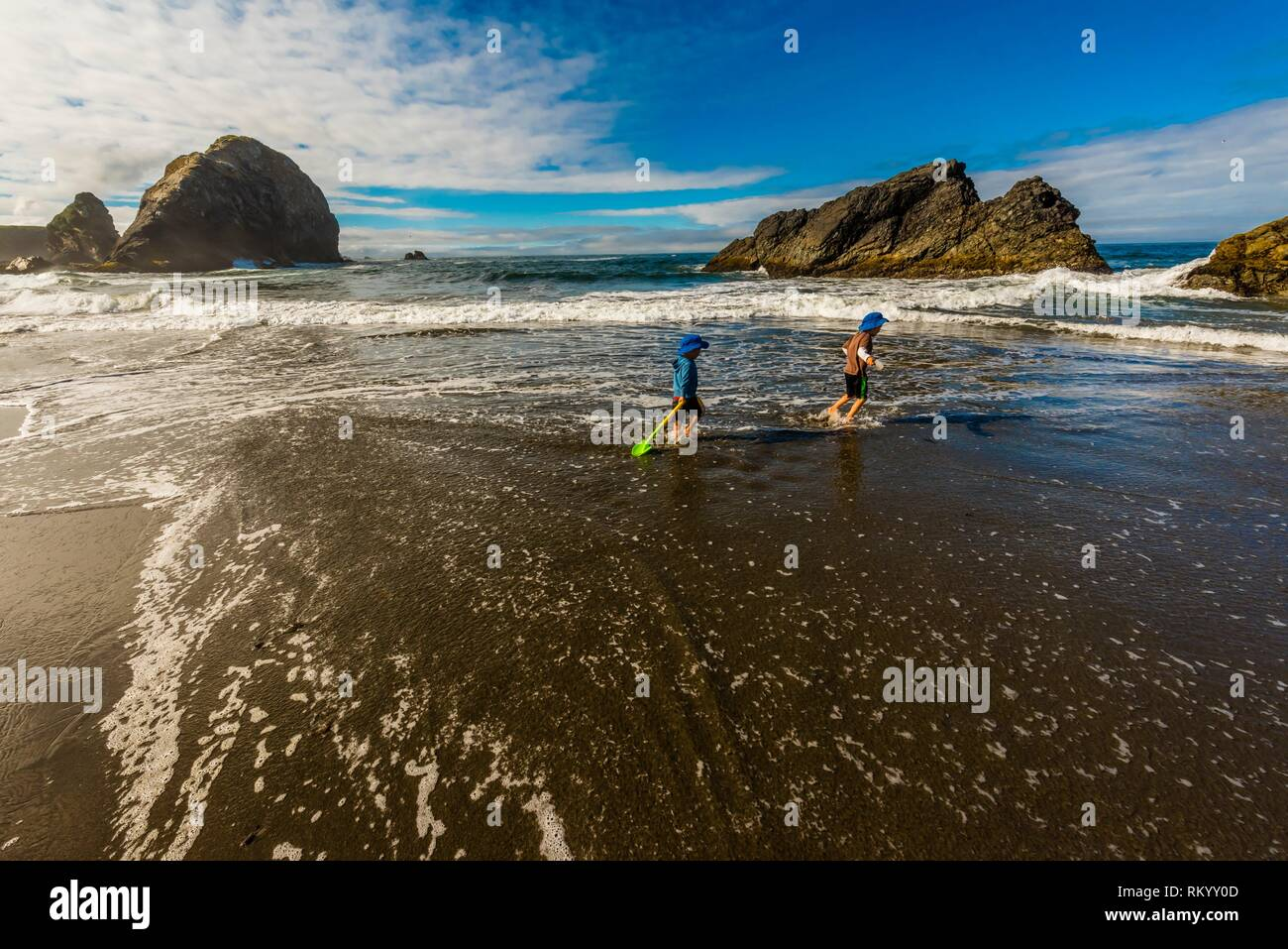 4 and 6 year old brothers playing in the surf at Harris Beach State Park, Brookings, Oregon USA. - Stock Image