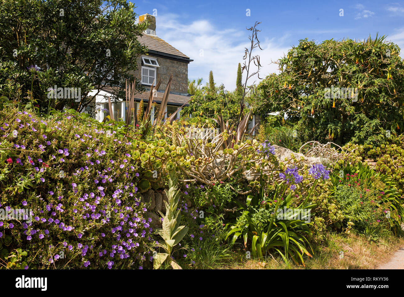 Cottage in Old Lane, Higher Town, St. Agnes, Isles of Scilly, UK - Stock Image
