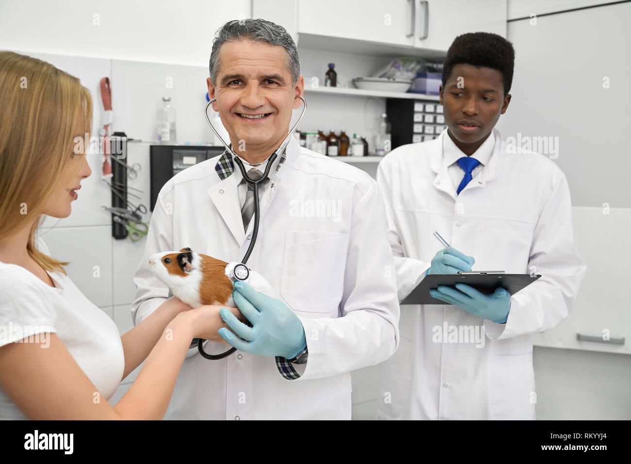 Cheerful mature veterinarian in medical gown and with stethoscope looking at camera, smiling. Woman, owner of pet holding animal in hands. African assistant writing with pen in folder. - Stock Image