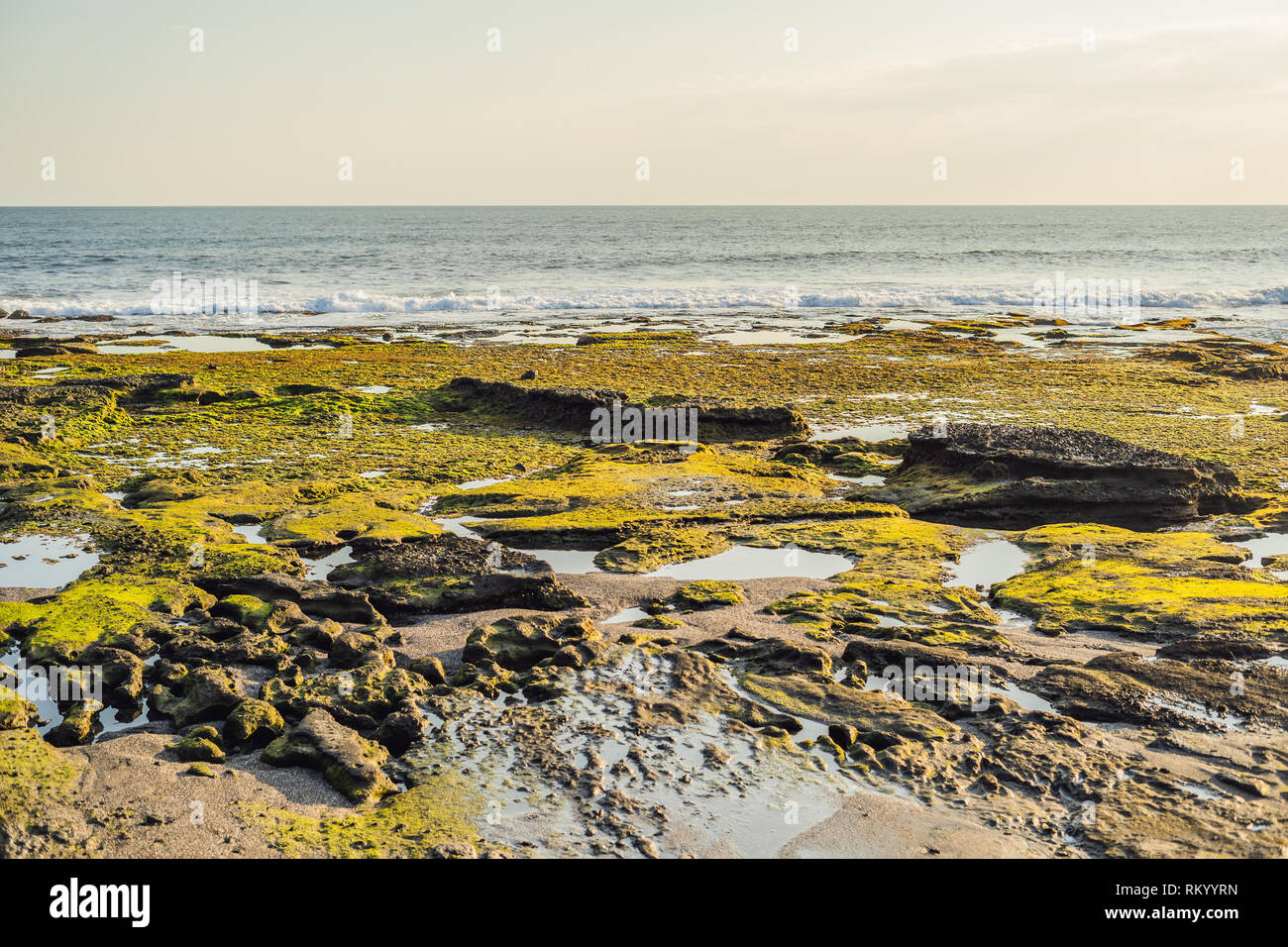 Sea tide on the moss-covered rocky beach, Bali, Indonesia Stock Photo