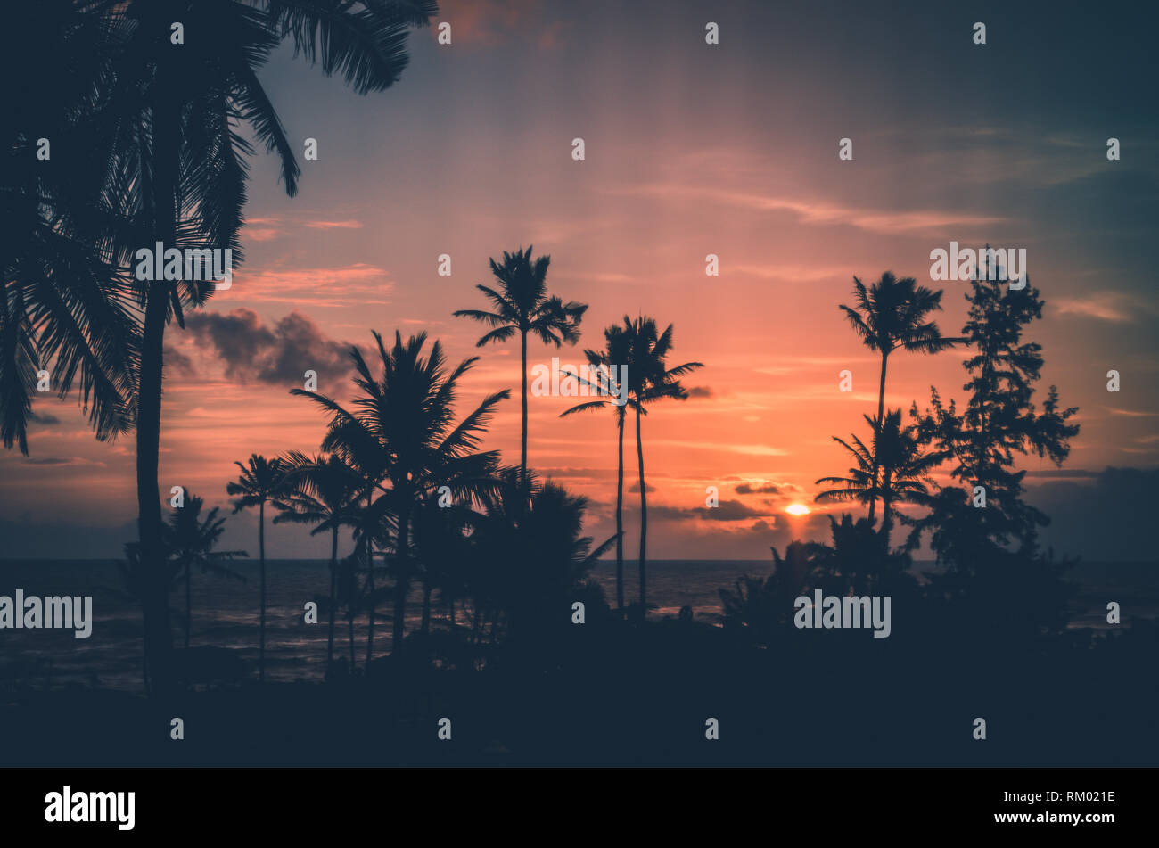 Hawaii, palm trees and sunsets a three commonly related terms. This picture present the trhee of them in a very harmonic way. - Stock Image