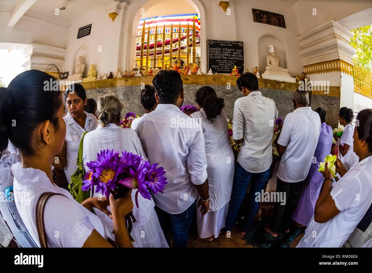 Prayer offerings, Sri Maha Bodhi, the sacred bodhi tree. Anuradhapura, North Central, Sri Lanka. Stock Photo