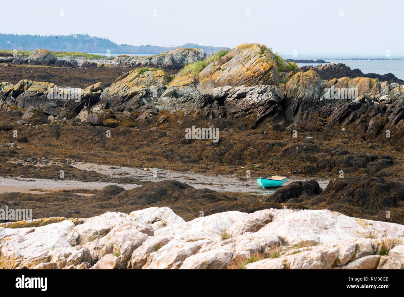 Green Dory beached at low tide at Woodward's Cove Grand Manan Stock Photo