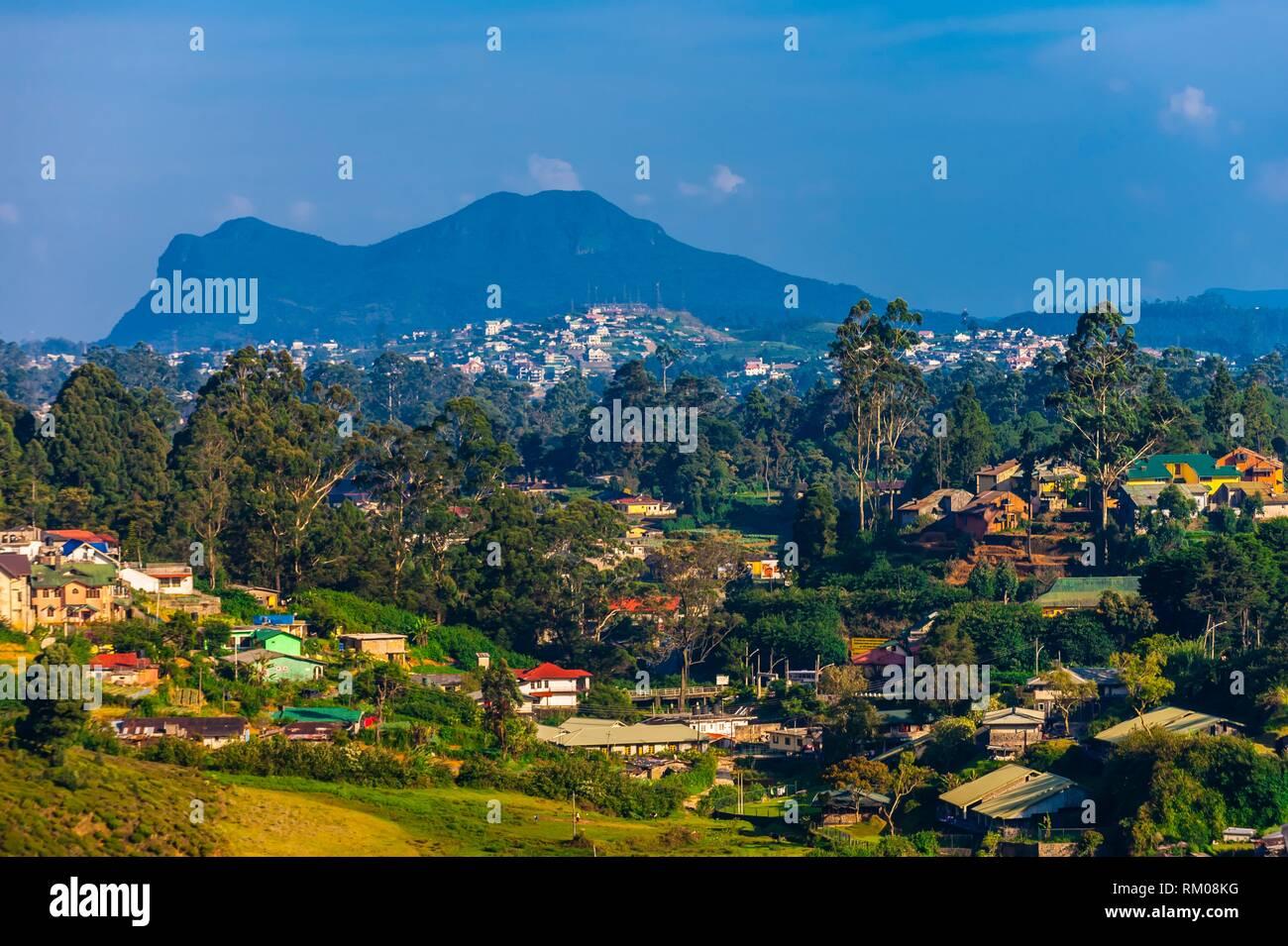 Nuwara Eliya, Central Province, Sri Lanka. Stock Photo