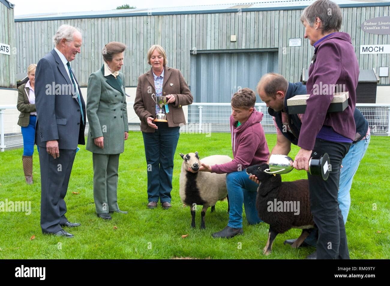 Anne, Princess Royal, visits the NSA Wales & Border Ram Sale at the Royal Welsh Showground in Builth Wells, in Powys, Wales, UK. - Stock Image