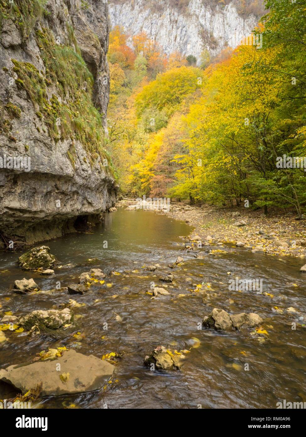 Transylvania, Romania, Scenic. - Stock Image