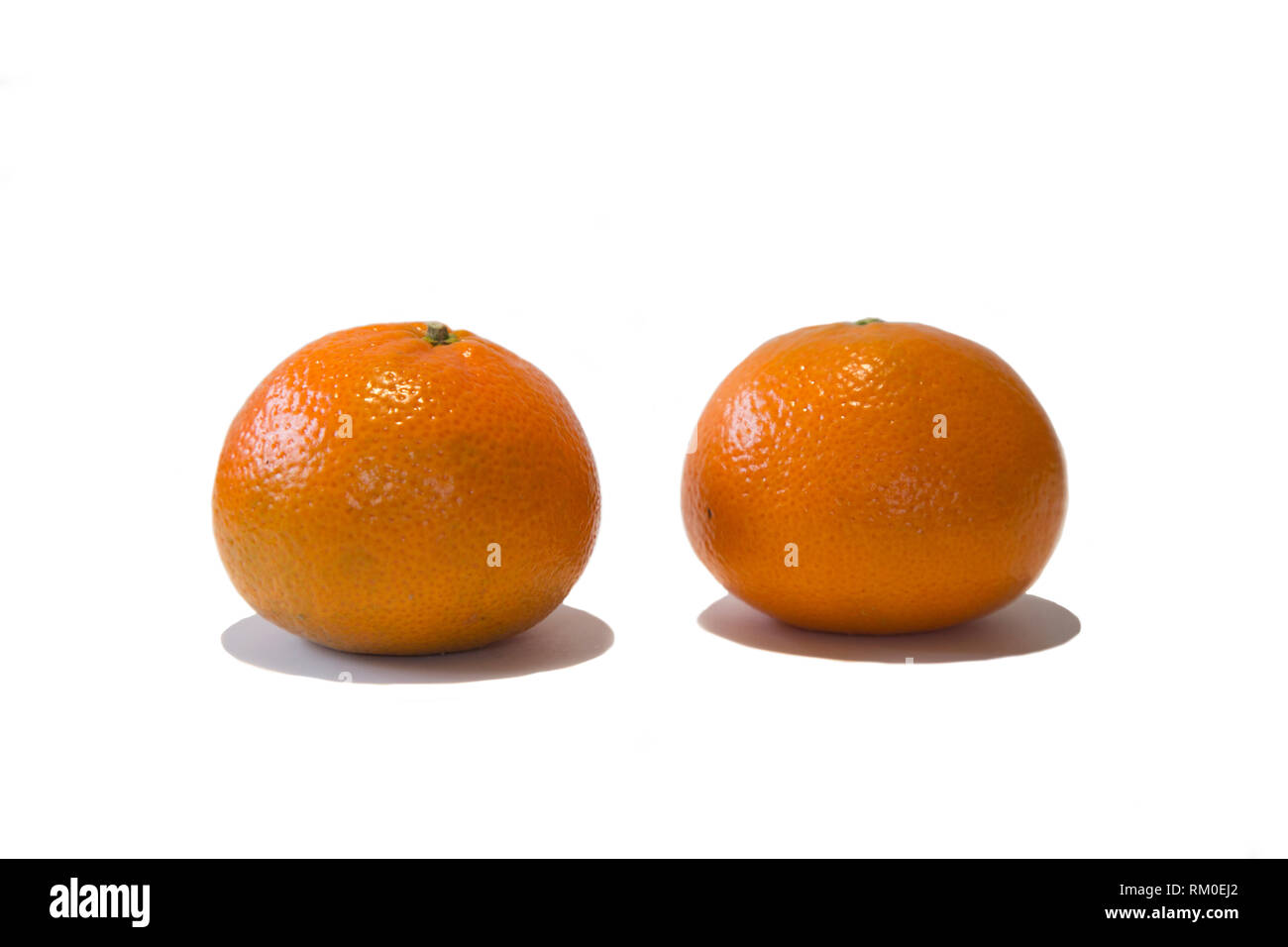 Two small oranges with their skin on against a white background - Stock Image