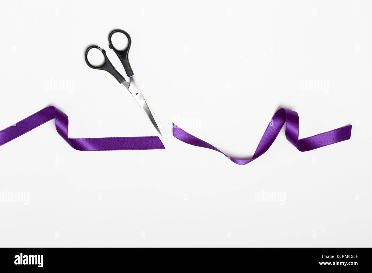 scissors cutting symbol feminism violet fabric ribbon on white background - Stock Image