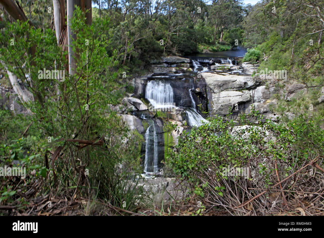 Visit Australia.  Views and scenics of Australia. Agnes Falls in Hazel Park, Victoria, Australia - Stock Image