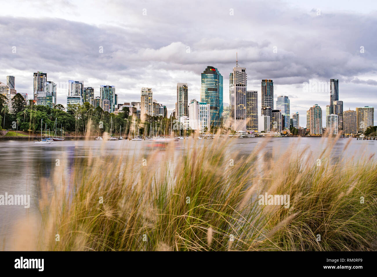 The Brisbane skyline. - Stock Image