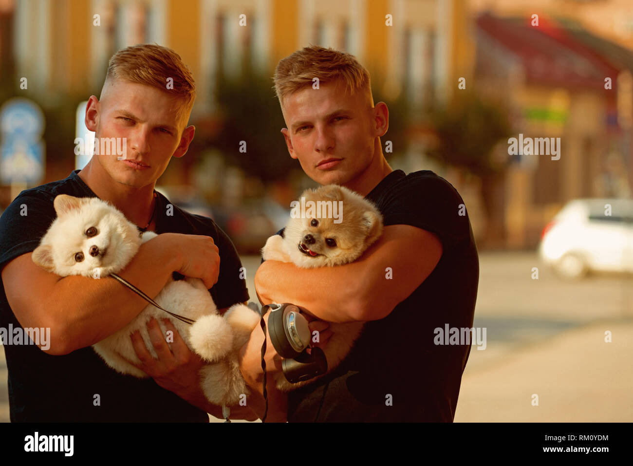 Always happy together. Muscular men with dog pets. Happy family on walk. Twins men hold pedigree dogs. Happy twins with muscular look. Spitz dogs love - Stock Image