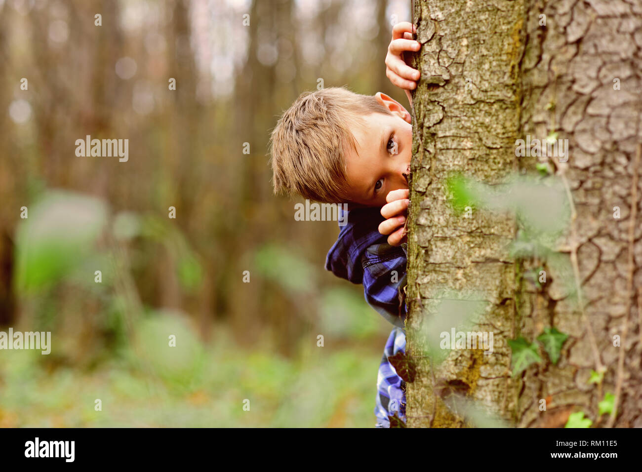 Spying is exciting. Small spy. Small child hide behind tree in forest. Small boy play guessing game. I spy with my little eye - Stock Image