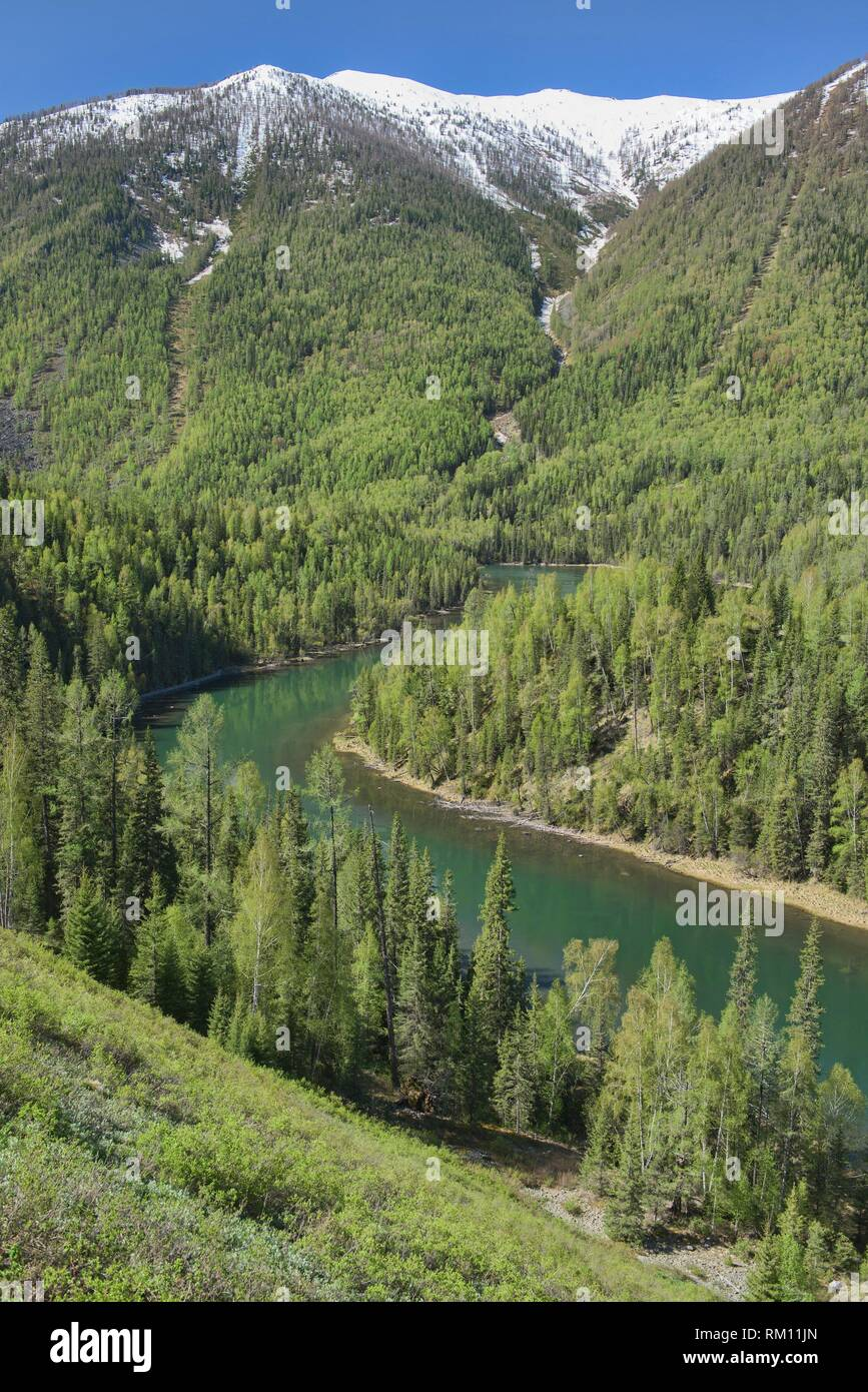 The lovely Kanas River at Kanas Lake National Park, Xinjiang, China. - Stock Image