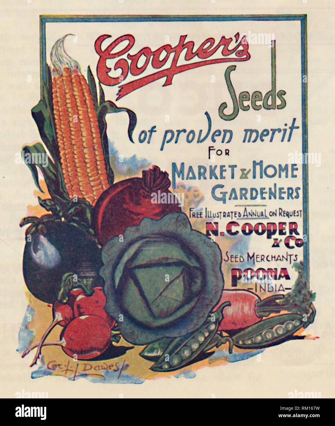 """Advertisement for Cooper's seeds, 1936. 'Cooper's Seeds of proven merit for Market & Home Gardeners'. Advertisement for vegetable seeds, aimed at the British colonial community, produced by N Cooper & Co, seed merchants in Poona, (modern-day Pune), India. From """"The Civil and Military Gazette"""" Annual, 1936. [India, 1936] - Stock Image"""