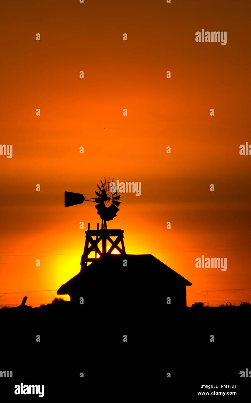 Windmill sunrise, Fort Rock Homestead Village, Christmas Valley National Back Country Byway, Oregon. - Stock Image