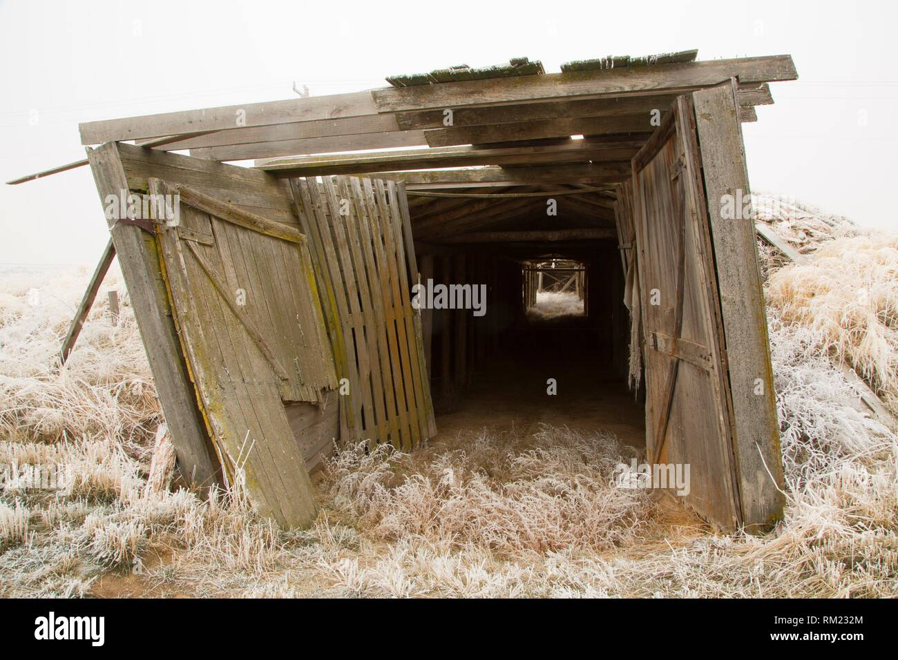 Root cellar, Minidoka National Historic Site, Idaho. - Stock Image