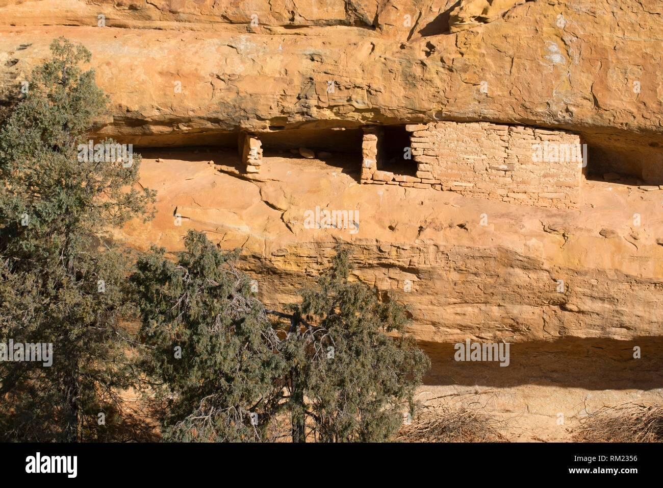 Cliff ruin near Spruce Tree House, Mesa Verde National Park, Colorado. - Stock Image