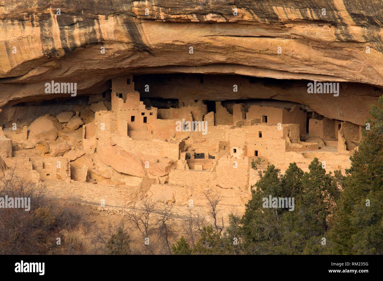 Cliff Palace, Mesa Verde National Park, Colorado. - Stock Image