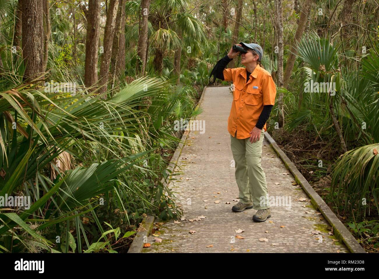 Biodiversity Loop boardwalk, Enchanted Forest Sanctuary, Florida. - Stock Image