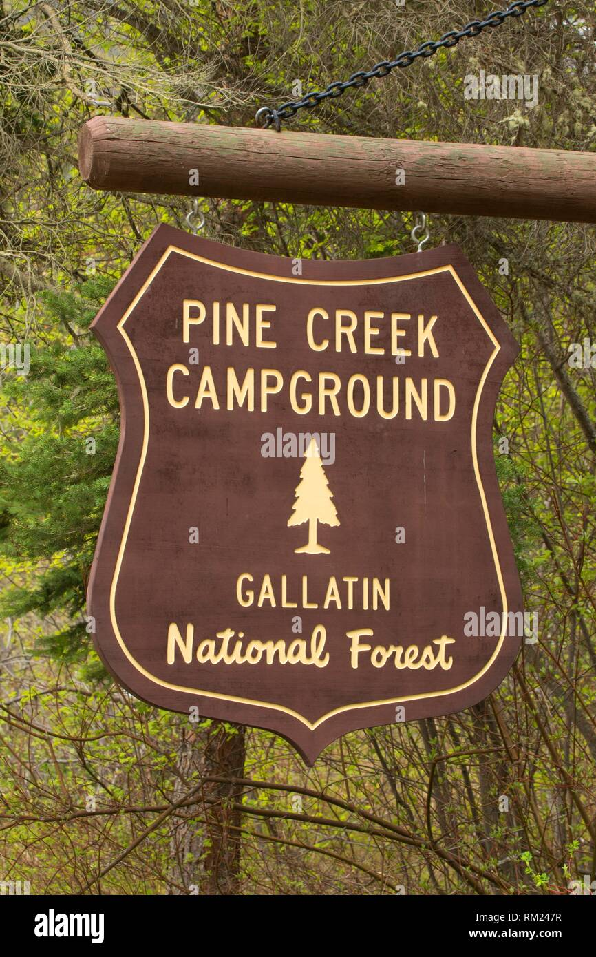 Pine Creek Campground sign, Gallatin National Forest, Montana. - Stock Image