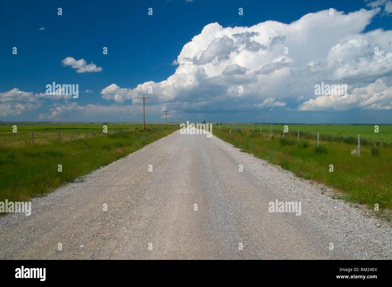 Farm road, Kingsbury Colony, Pondera County, Montana. - Stock Image