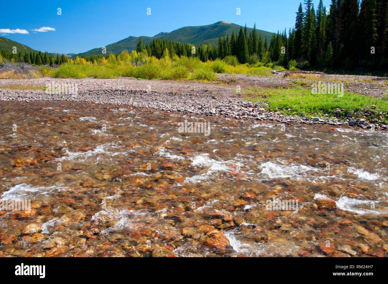 Middle Fork Of The Flathead River Stock Photos & Middle Fork Of The