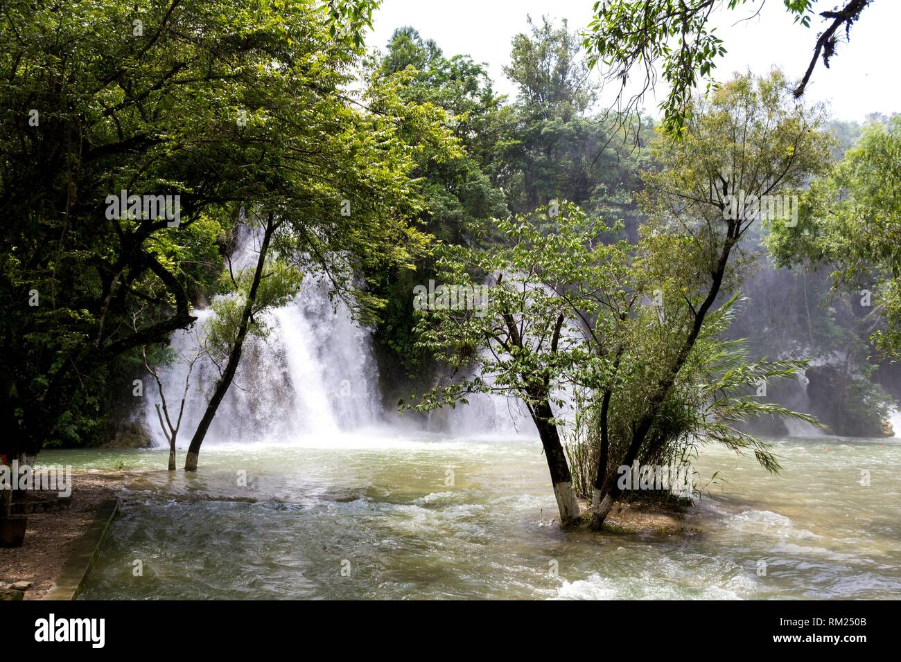 Waterfalls in the forest. Tamasopo, San Luis Potosí. Mexico. - Stock Image