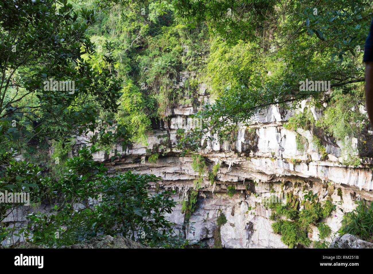 Cave of swallows. Aquismón, San Luis Potosí. Mexico. - Stock Image