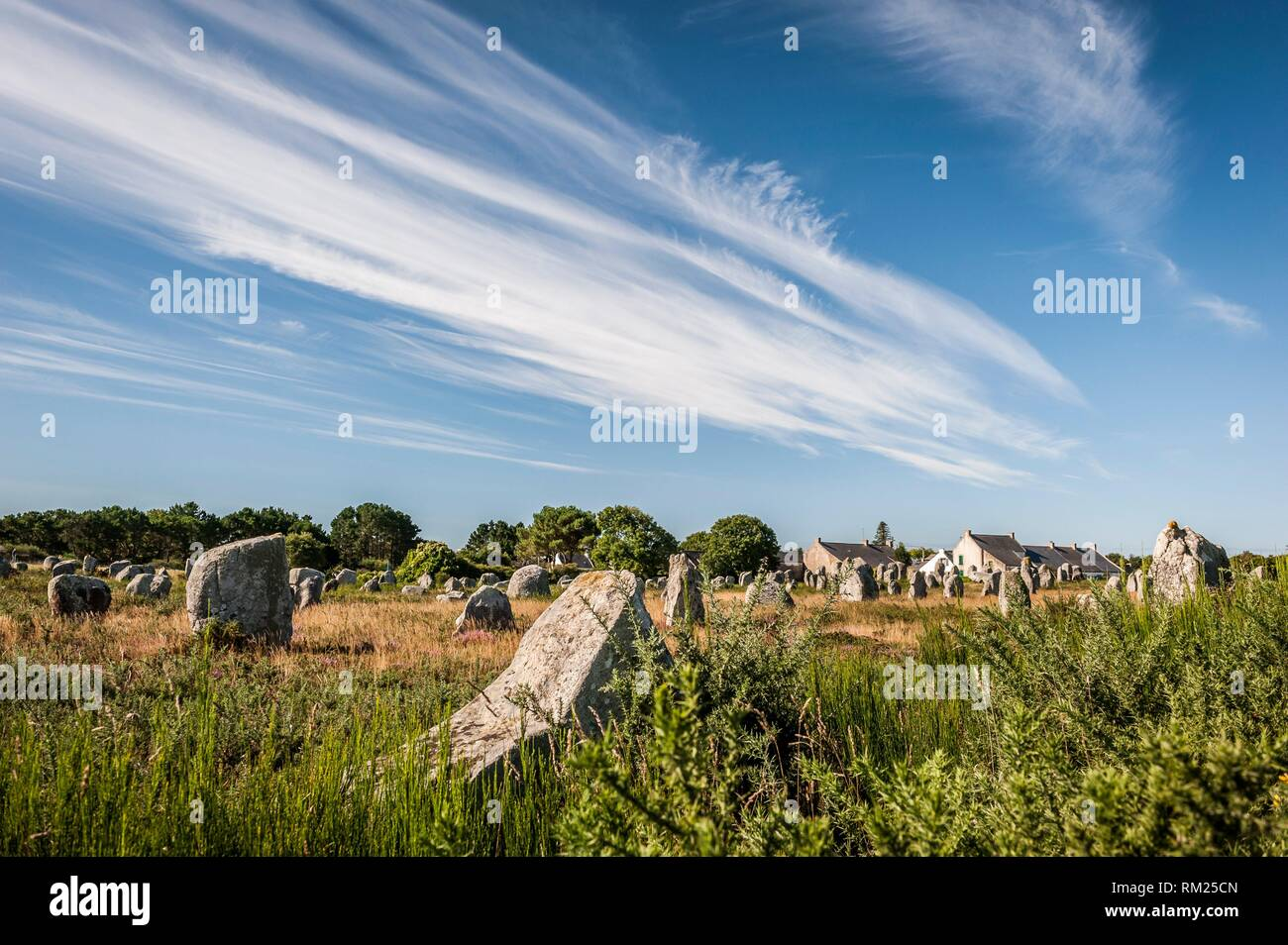 The Ménec alignments, the most well-known megalithic site among the Carnac stones (department of Morbihan, region of Bretagne, France). - Stock Image