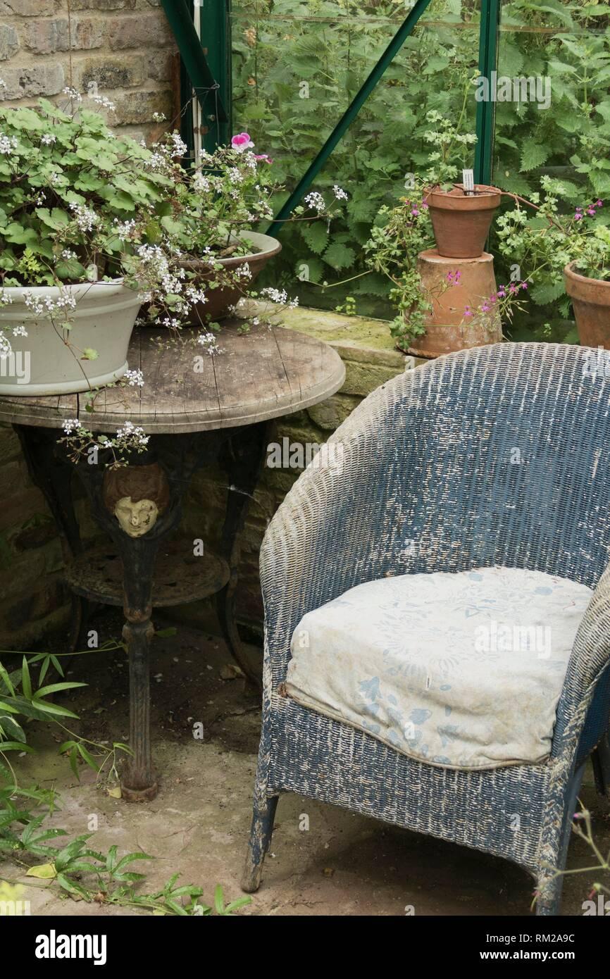 Astonishing Sun Worn Blue Wicker Chair In The Corner Of A Greenhouse Download Free Architecture Designs Rallybritishbridgeorg