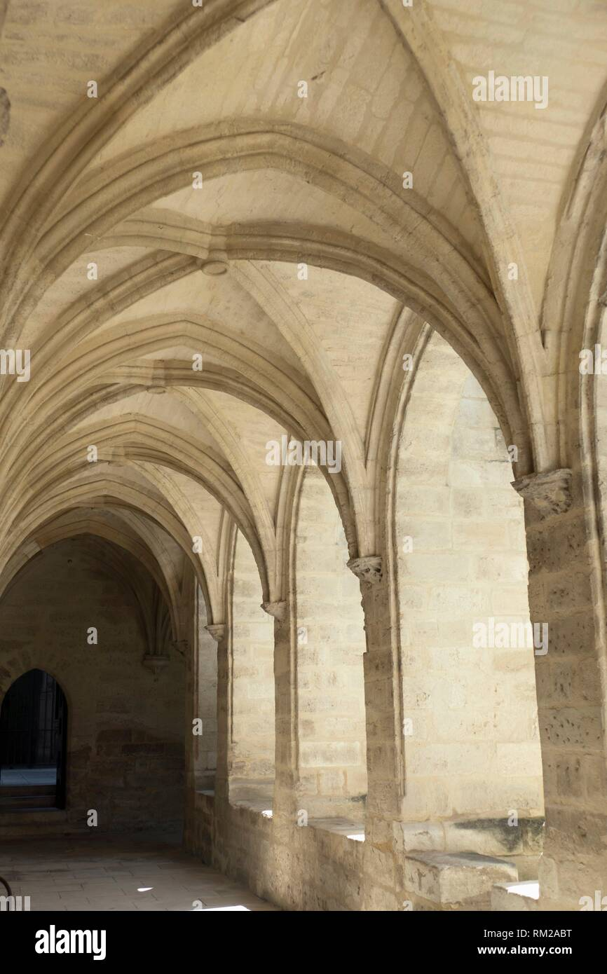 Sun illuminating the repeating, ribbed arches and vaulting in warm stone hues in a cloister at Chartreuse Monastery, Villenueve-les-Avignon, - Stock Image