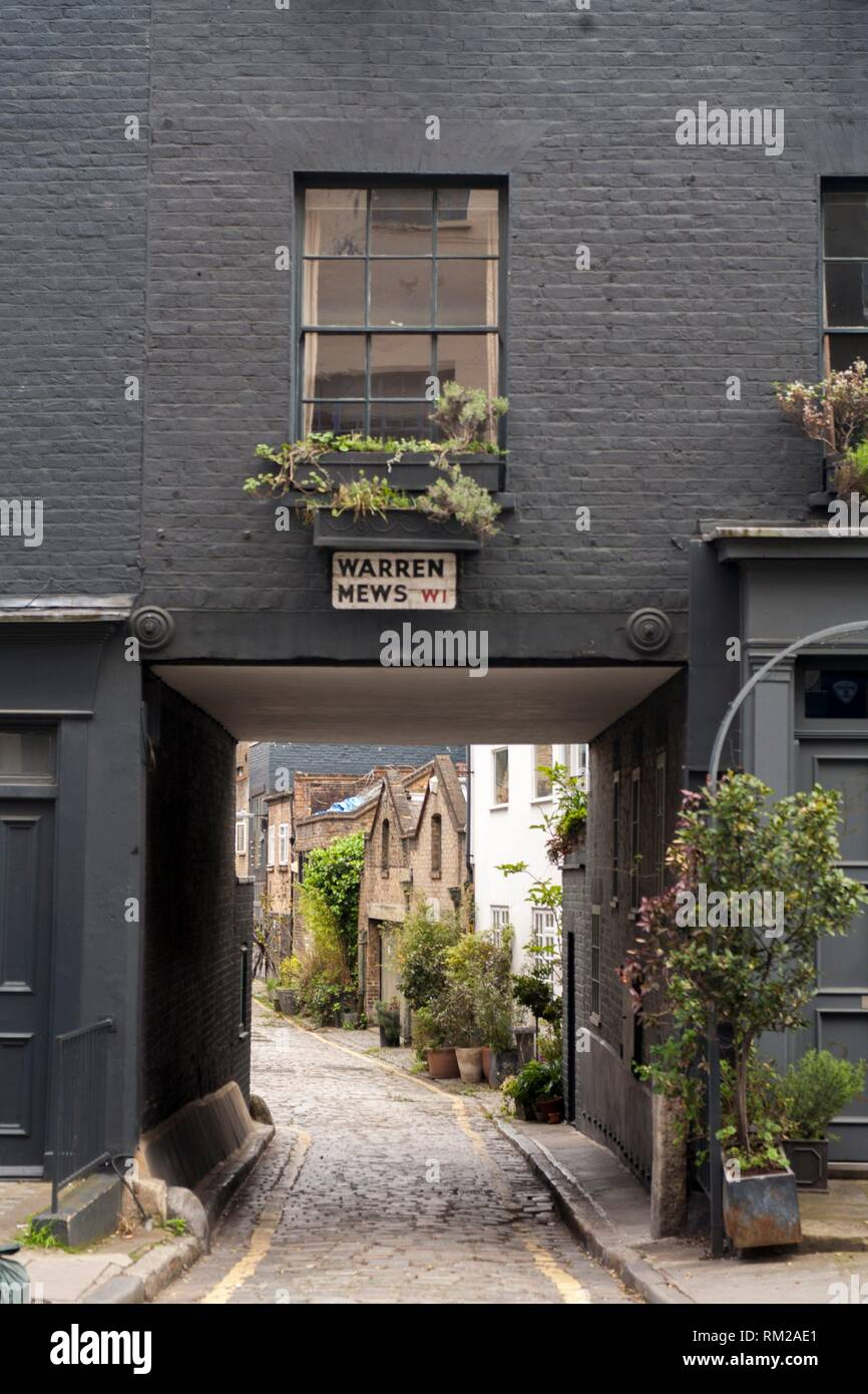 Warren Mews street, London. A small street near to warren street. Is beautifull to see places like this in te center of a big city. - Stock Image