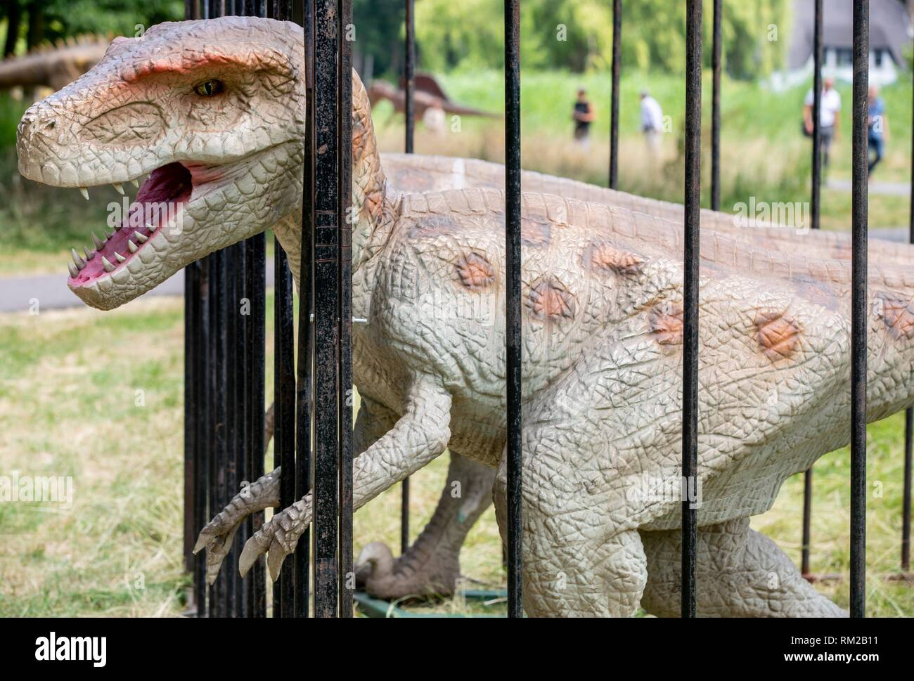 SCHIEDAM - Press preview of Jurassic Kingdom in The Netherlands. Jurassic Kingdom: Where Dinosaurs Come To Life, continues its UK & European Tour. Stock Photo