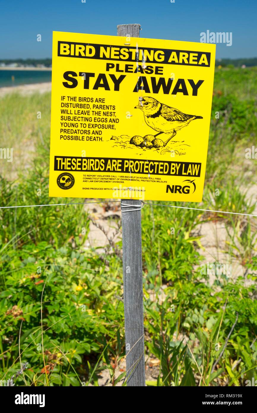 Endangered bird keep out sign, Bluff Point State Park, Connecticut. - Stock Image