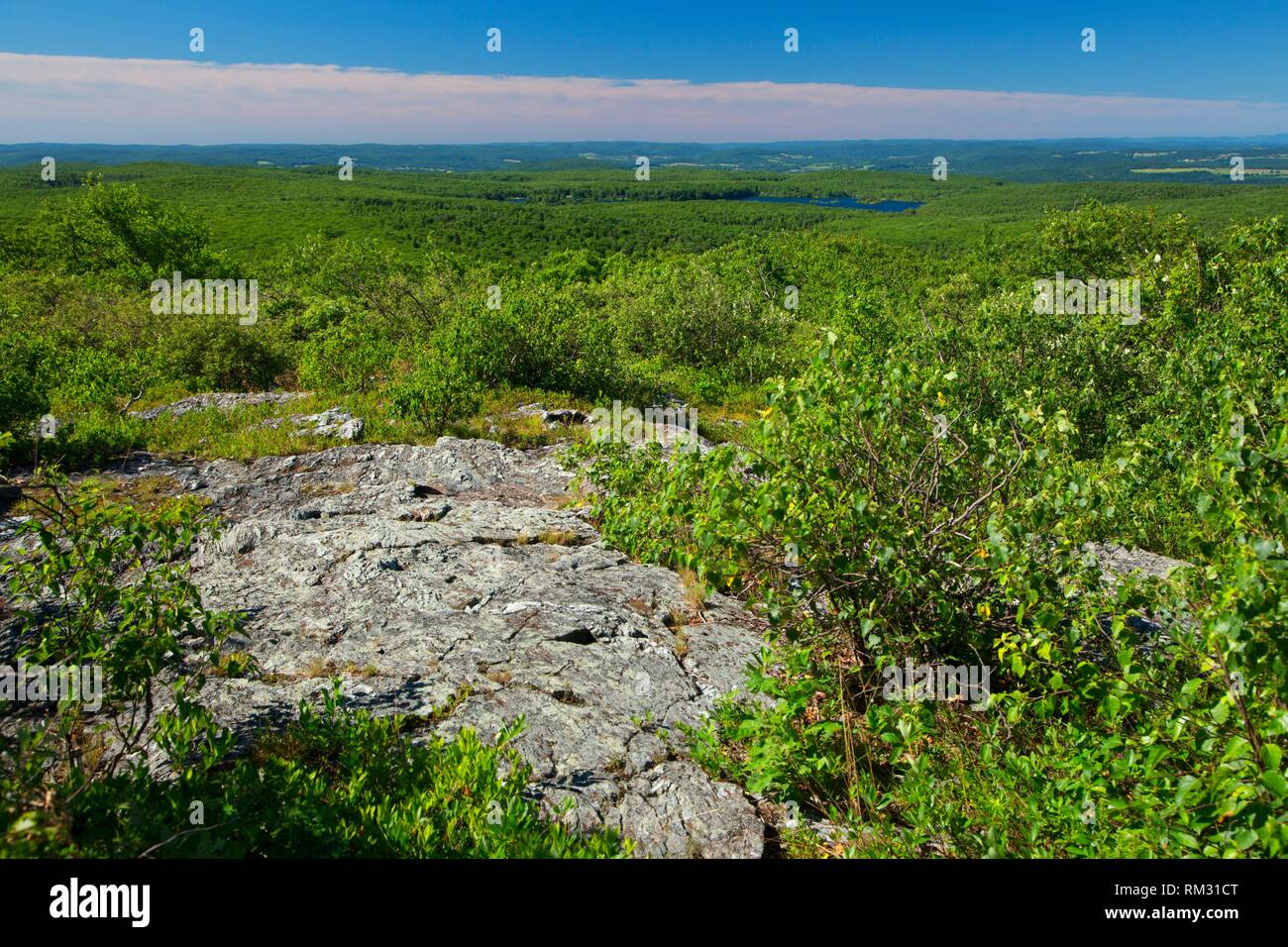 Round Mountain summit view along trail, Litchfield County, Connecticut. - Stock Image