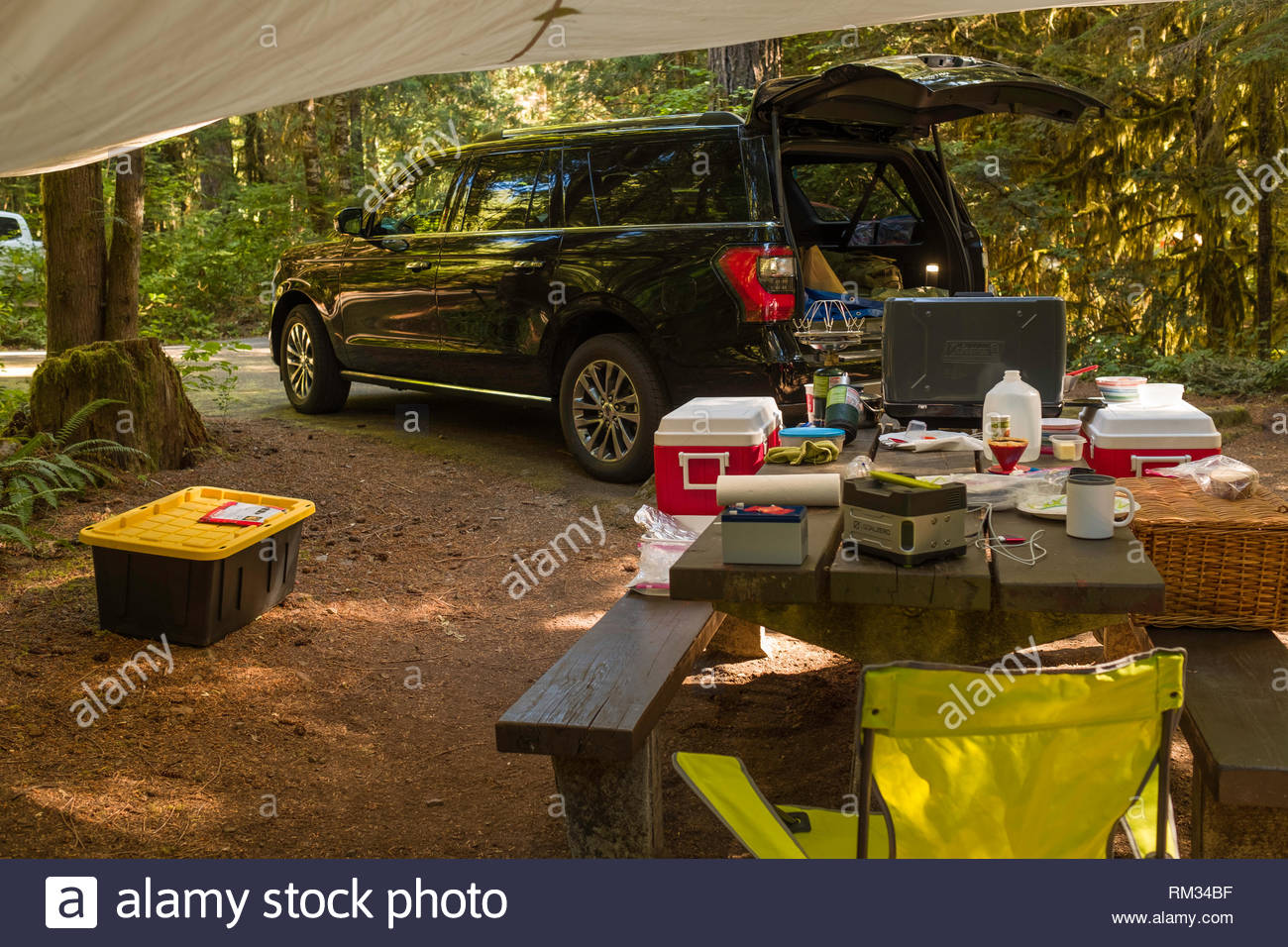 Picnic table covered with sundry camping items in front of a black Ford Expedition EL Extended SUV parked at campsite with rear lift gate open, Humbug Stock Photo