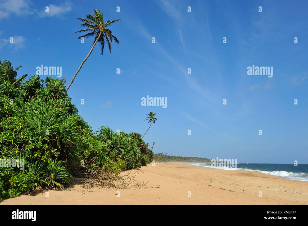 Tangalle beach, Sri Lanka, Indian subcontinent, South Asia. Stock Photo