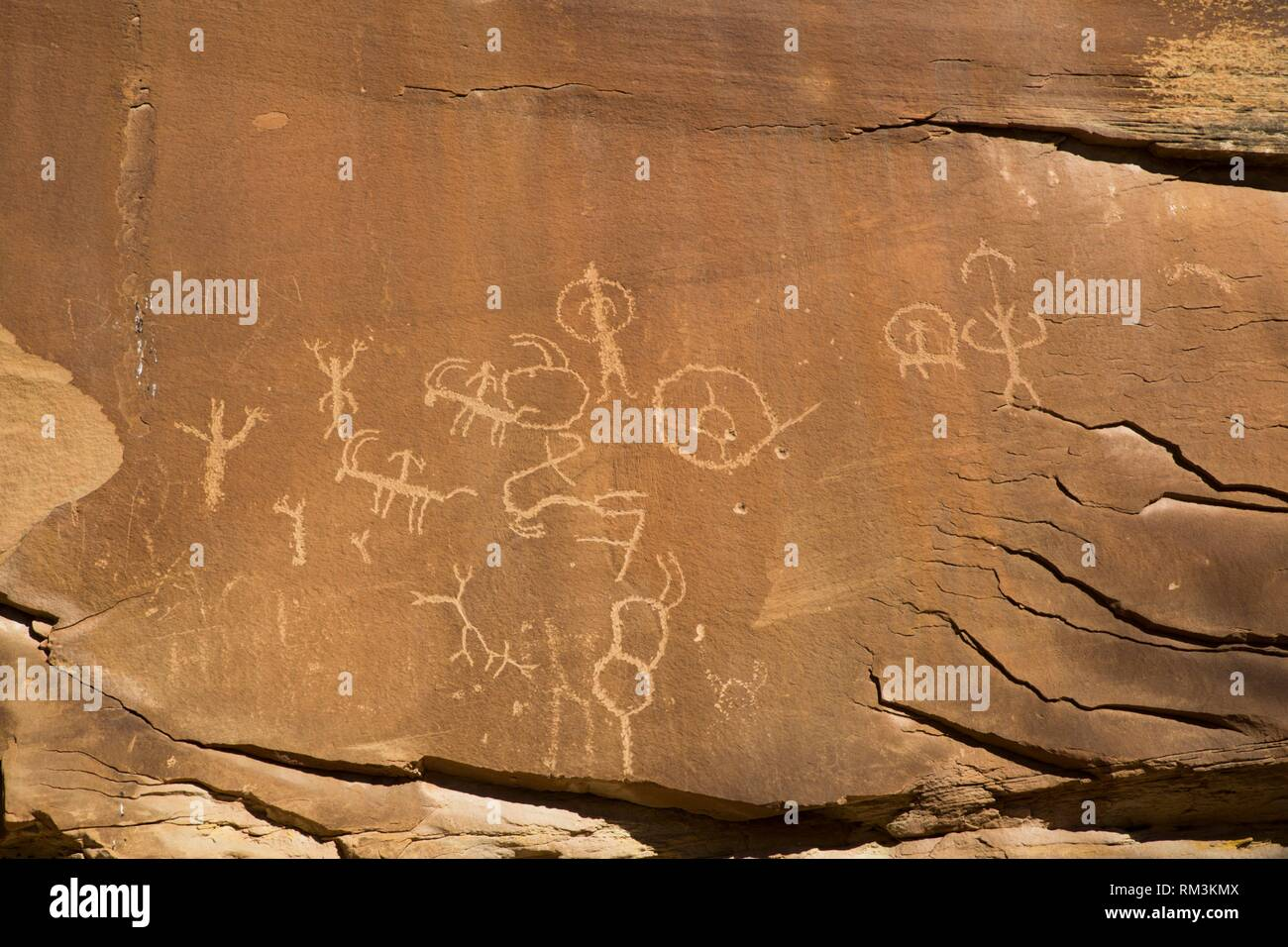 Ancestral Puebloan Petroglyphs, Upper Sand Island, Bears Ears National Monument, Utah, USA - Stock Image