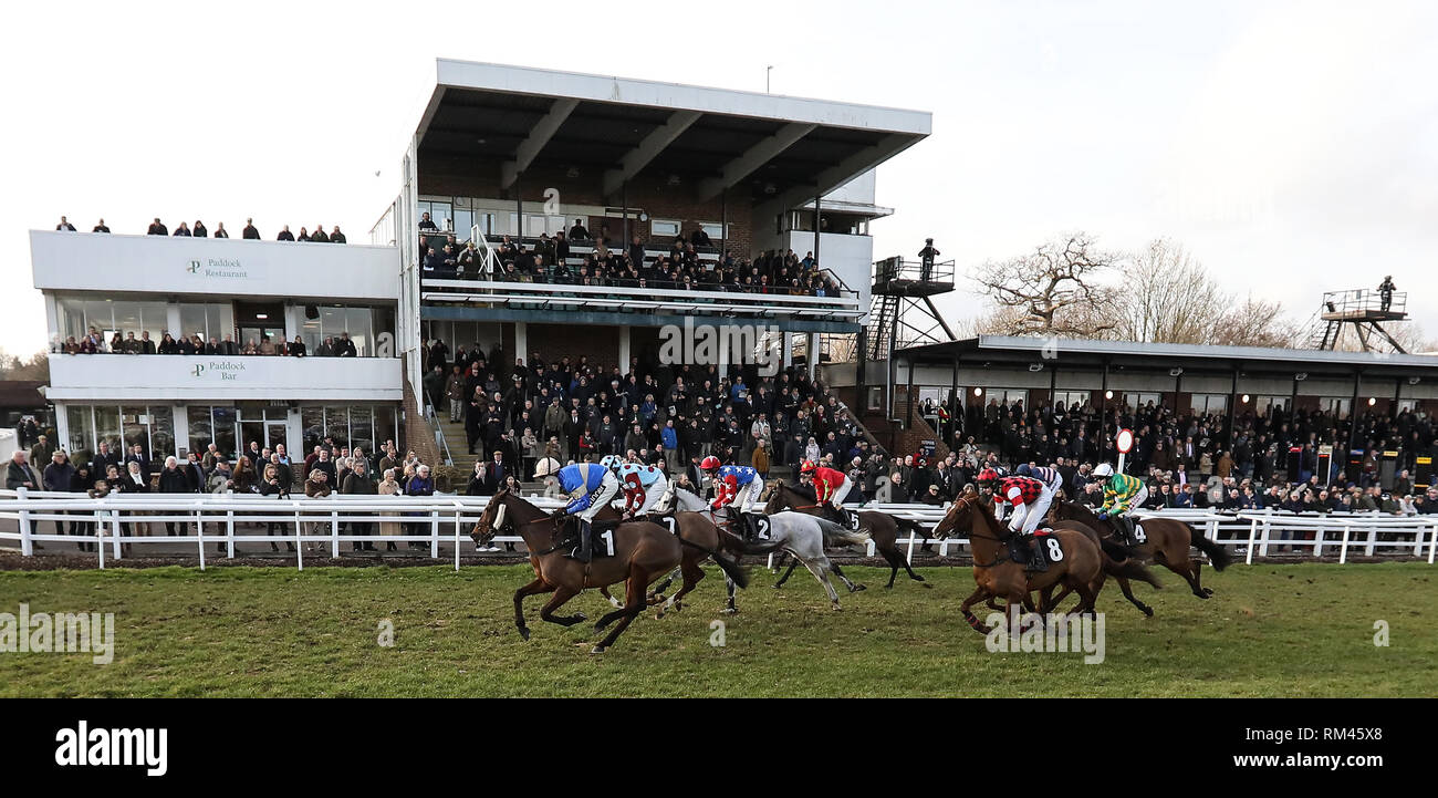 Plumpton, UK  13 February 2019 Runners and Riders back in